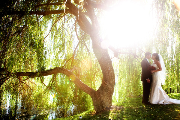 under a willow tree at Leal Vineyards