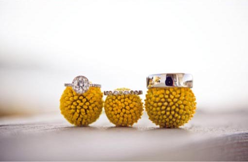 Round diamond engagement ring with halo and white gold engagement ring on yellow billy balls