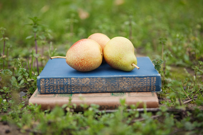 Three yellow pears atop 2 vintage books on the green grasss