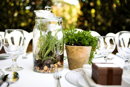 wedding centerpieces - terrarium