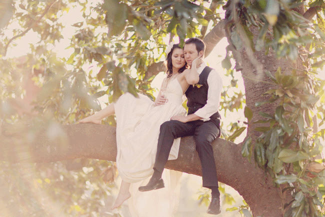 bride and groom sitting in a tree with sun shining through leaves