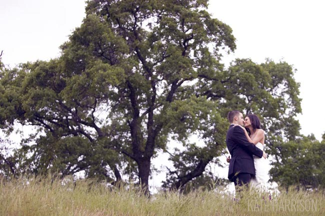bride and groom kiss in front of giant tree at Whitney Oaks