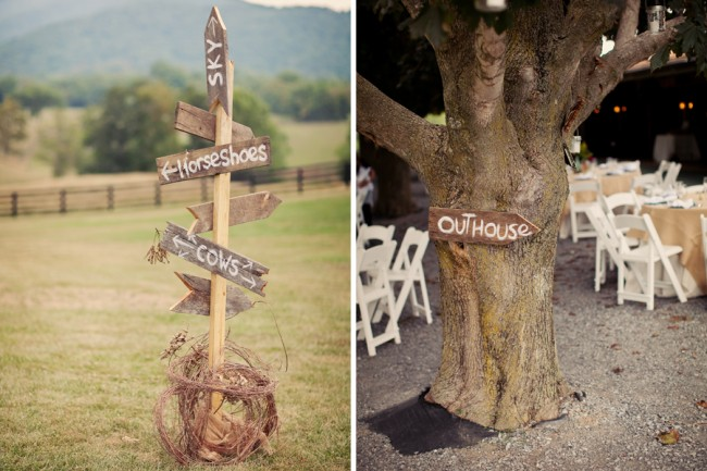 wood direction signs on tree and posts