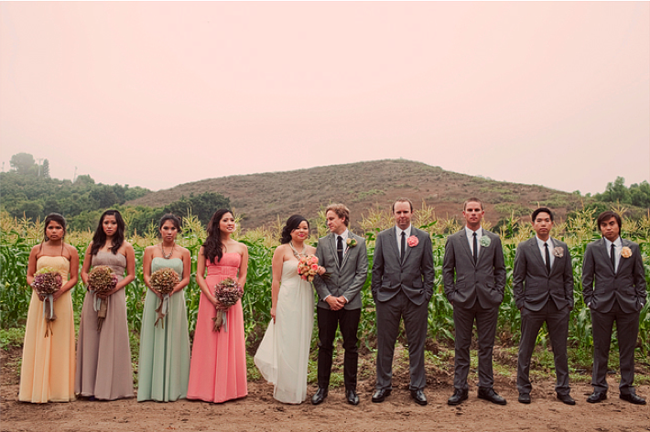 Bridal party in a row: bridesmaids in pastel dresses, groomsmen in gray suits
