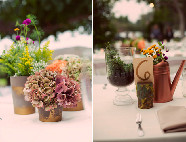 opper watering cans filled with flowers, glass terrariums, and pieces of wood