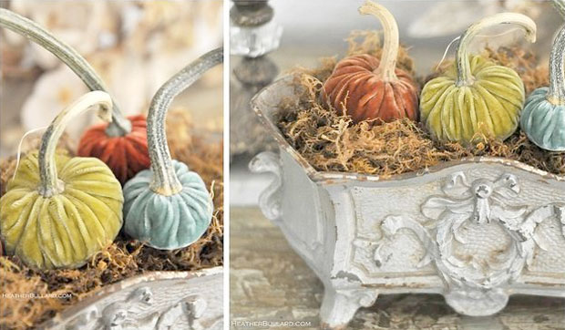 velvet pumpkins with real stems in pastel orange, green, and aqua
