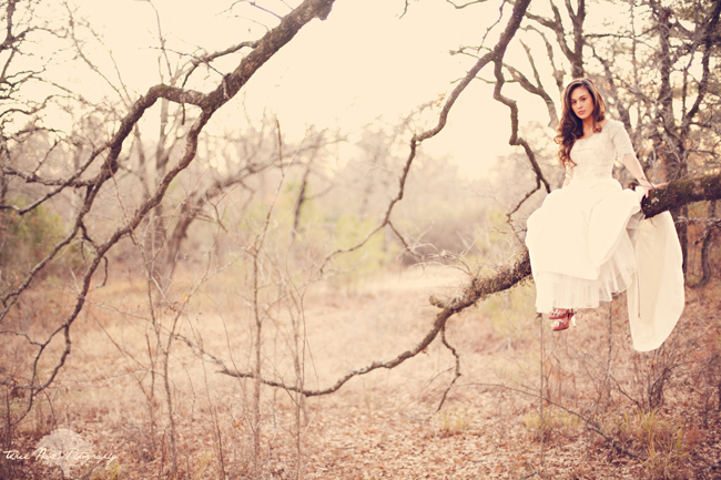 Bride sitting on tree limb in white dress at engagement shoot