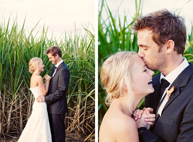 bride and groom hug in sugar cane fields
