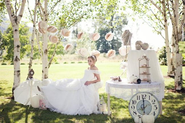 styled cinderella bride