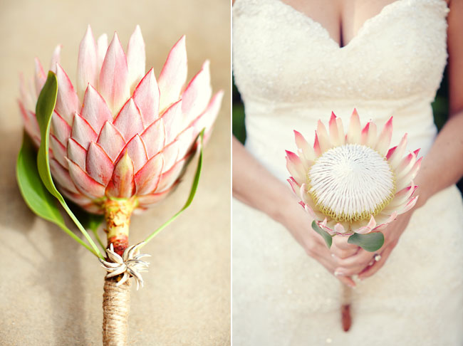 DIY wedding on a budget - Protea Bouquet