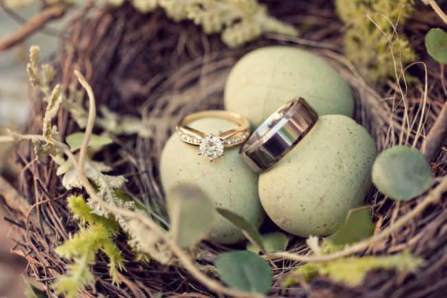 wedding rings on robins eggs