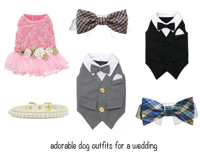 Adorable dog outfits from Poochieheaven