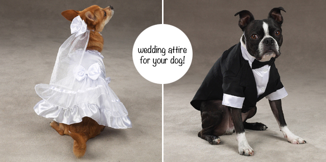 weddingattire