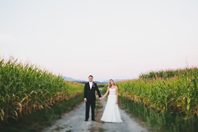 bride and groom stand on road among corn field