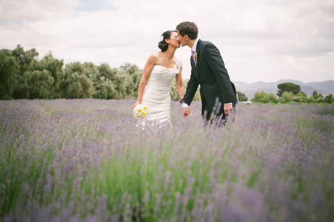 bride and groom kiss among lavender fields