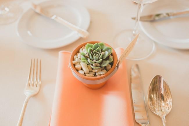 peach napkin with mini planter on top