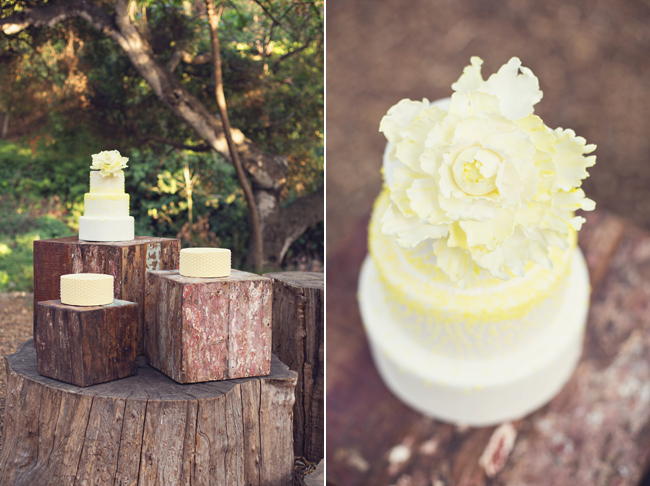 Rustic styled shoot wedding cake on wood blocks outdoors at Santa Barbara Museum of Natural History