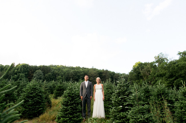 Bride and groom in christmas tree farm
