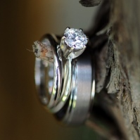 Rustic Winery Wedding – Ring on Tree