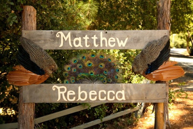 wooden sign with real peacock feathers