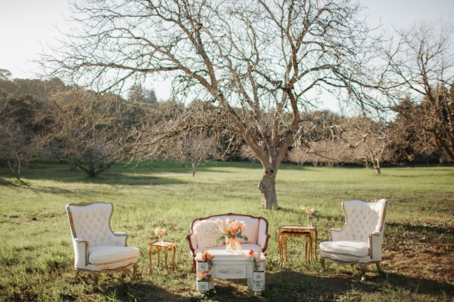 high back vintage chairs and love seat in middle of field