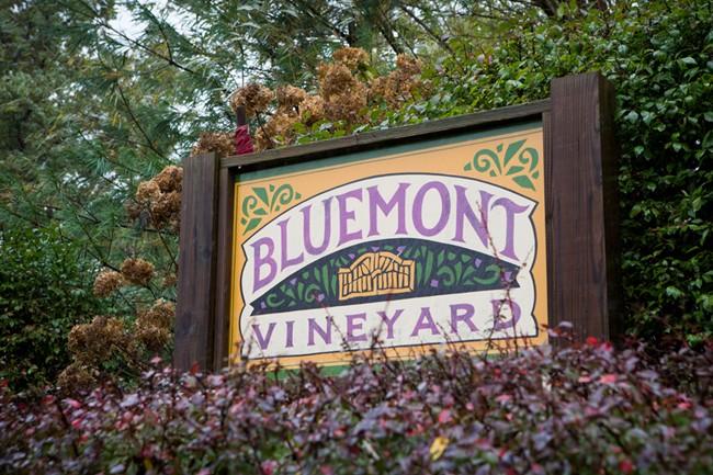 Bluemont Vineyard Welcome Sign