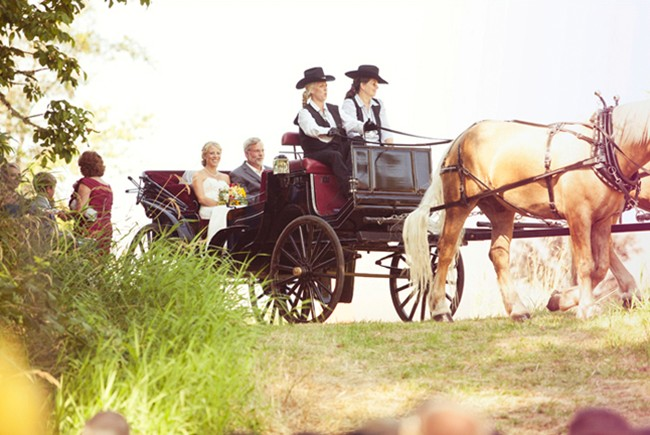 Bride in a horse drawn carriage