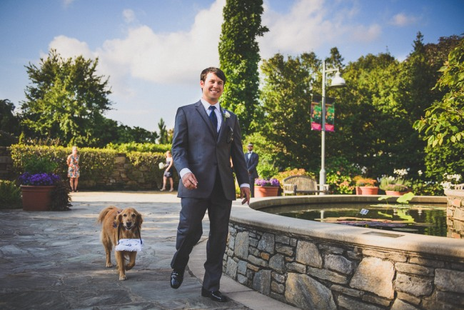 Groom and golden retriever walking down aisle  at North Carolina Arboretum at wedding