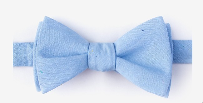 Blue Groom Butterfly Shaped Bow tie