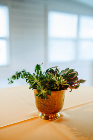 Gold vase with succulents at wedding reception at Palm door venue