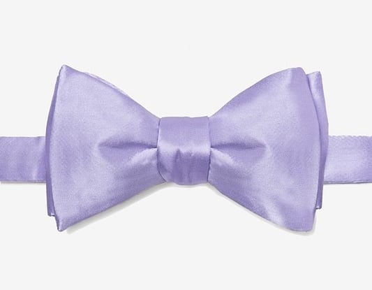 Groom's Purple Bow Tie