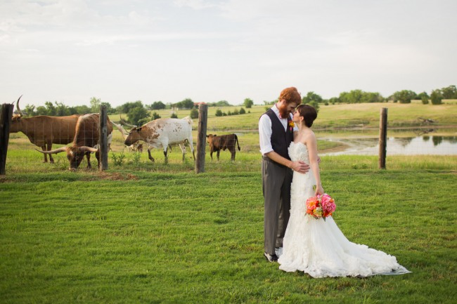 couple in farm field with longhorn cattle behind