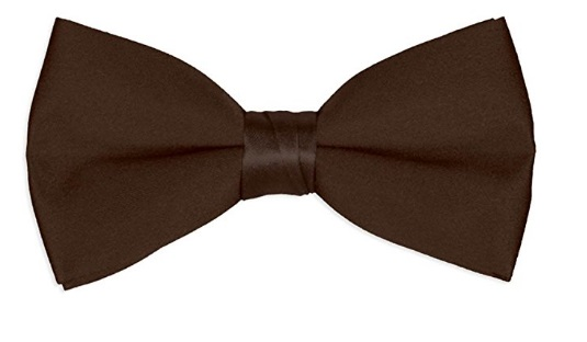 Men's Chocolate Brown Bow tie