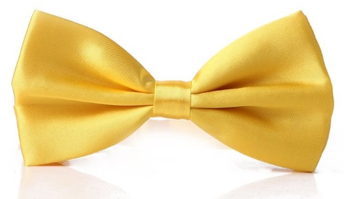 Men's yellow Bow tie