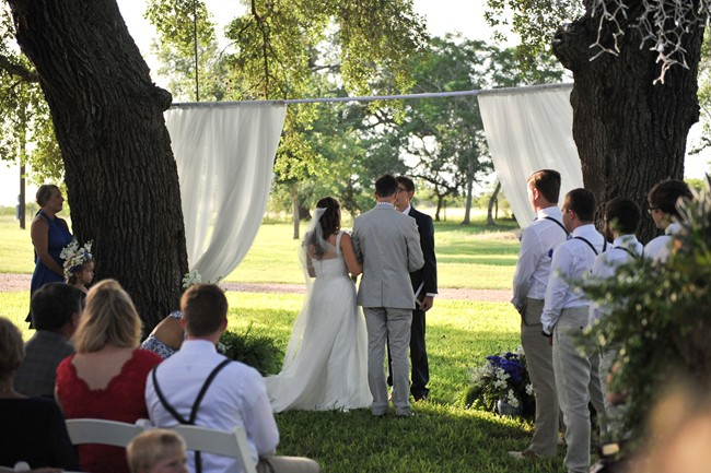 Outside wedding ceremony between 2 tree with sheer fabric hanging down
