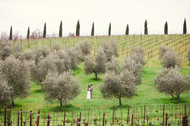 21 bride and groom embracing in olive orchard in Livernano Radda in Chianti Tuscany, Italy wedding