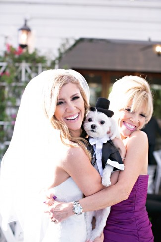 Bride with adorable dog wearing tuxedo and tophat