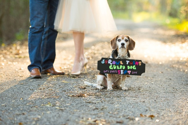 Maternity photo couple standing on path with beagle with sign around this neck saying they are expecting