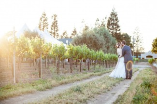 Bride and groom walk among vines at Guglielmo Winery wedding