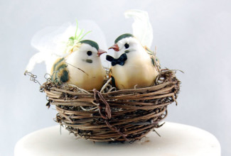 21 Unique Love Bird Wedding Cake Toppers