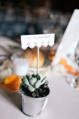 A succulent plant in a mini silver bucket for a wedding guest favors