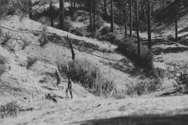 Black and white photo of a couple holding hands walking up a hill in a forest
