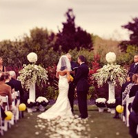 sunny yellow color scheme wedding