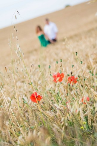 poppies growing in field with couple walking behind