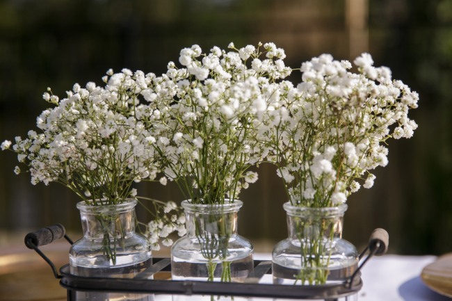 3 clear vases with baby's breath inside