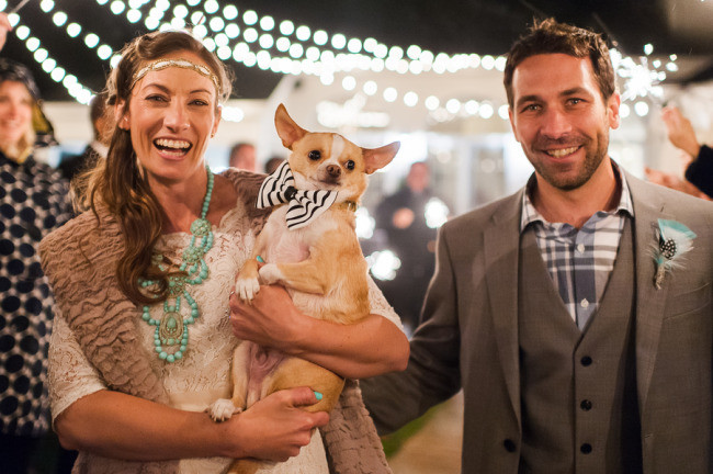 Bride and groom leaving their wedding reception holding their chihuahua with a bow tie