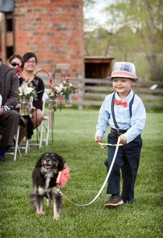 dog leading ring bearer down the aisle