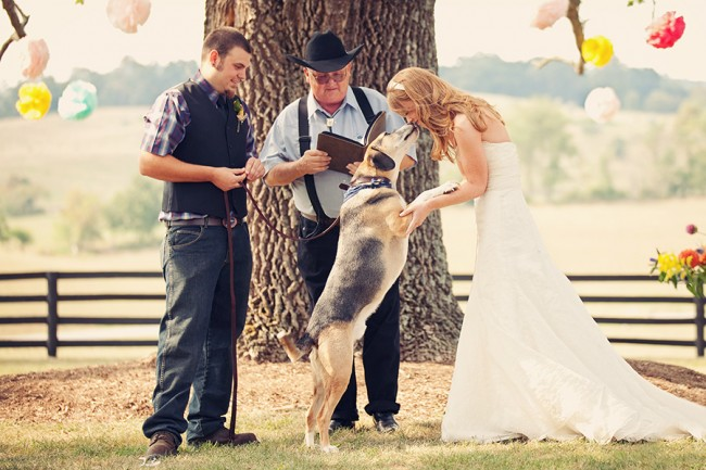 bride, groom, and their dog at an outdoor wedding ceremony