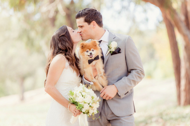 4 bride and groom holding small dog wearing a bow tie during first look before ceremony