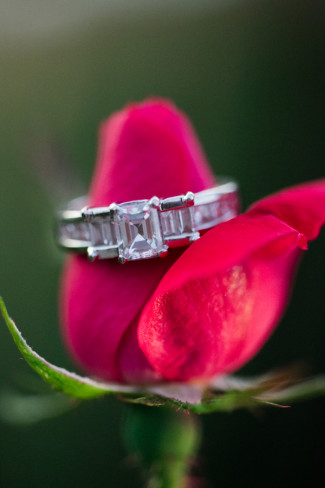 Emerald cut engagement ring placed on a red rose